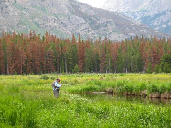 3 Great Big Sky Fishing Destinations