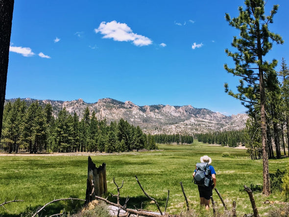 Yosemite's Little Sister: Exploring the Rarely Visited Domeland Wilderness