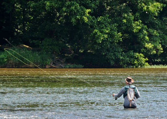 Special Spots and Solitude: Learning to Fly Fish in Southwest Virginia