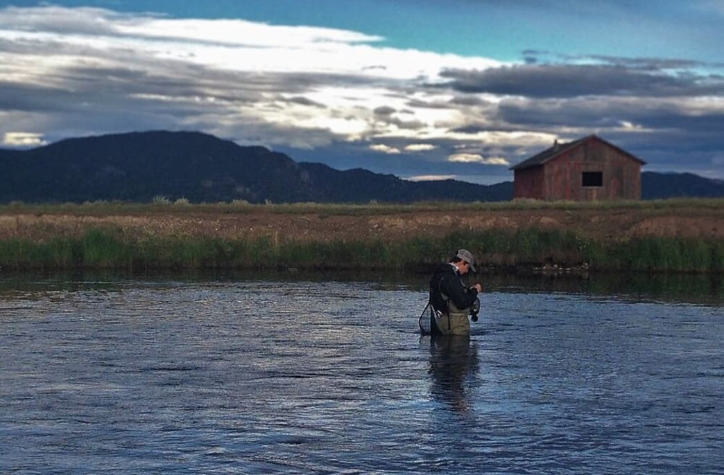 The Best Stretch of the South Platte River: Colorado's Dream Stream