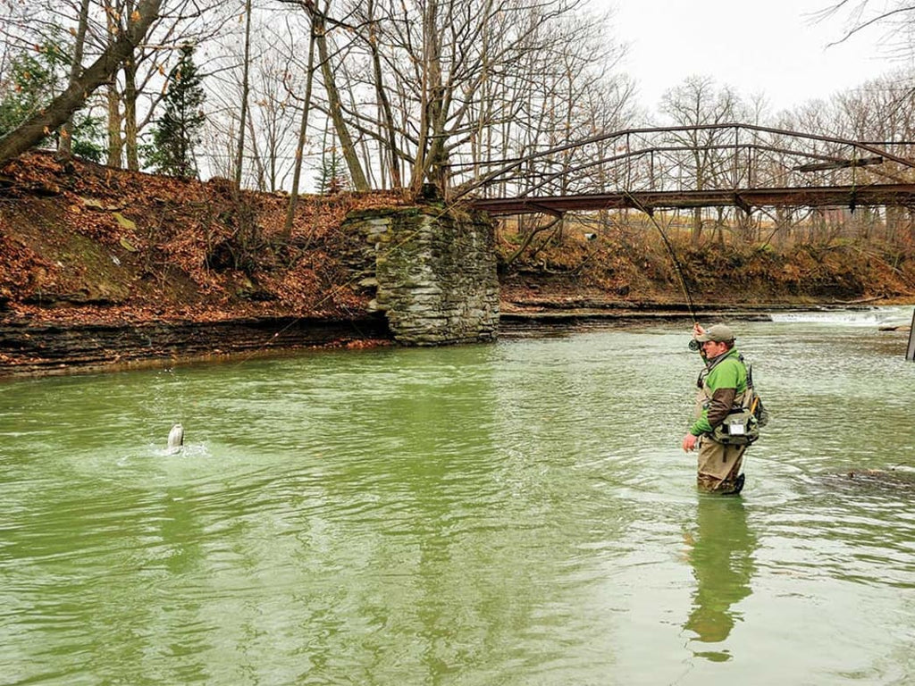 The Steel Deal: How to Catch Great Lakes Steelhead in the Fall