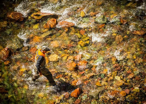 Get Ready for the Fall's Best Trout and Salmon Fishing