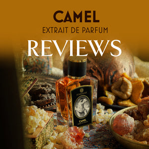 Zoologist Camel Reviews Roundup