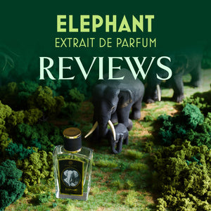 Zoologist Elephant Reviews Roundup