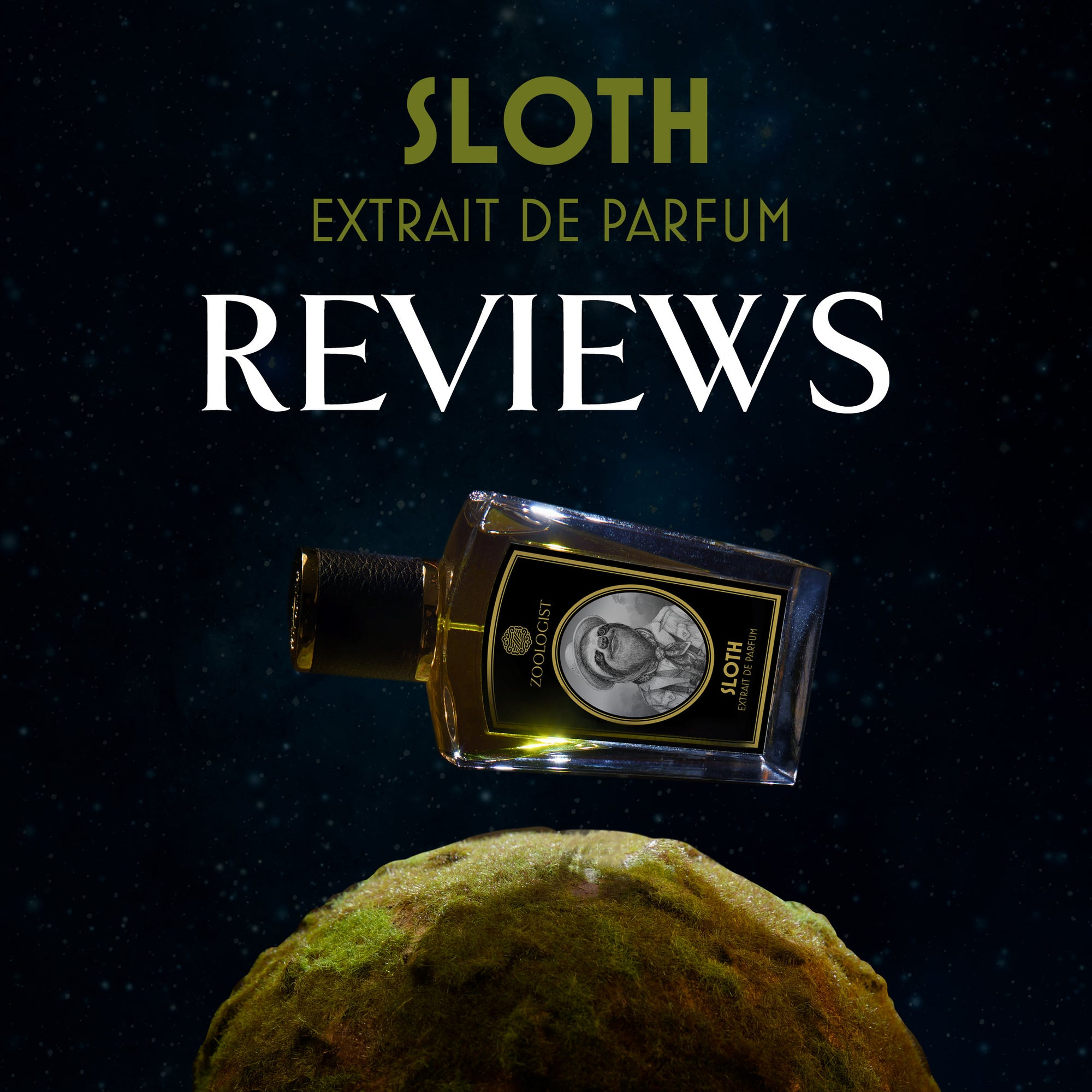 Zoologist Sloth Reviews Roundup