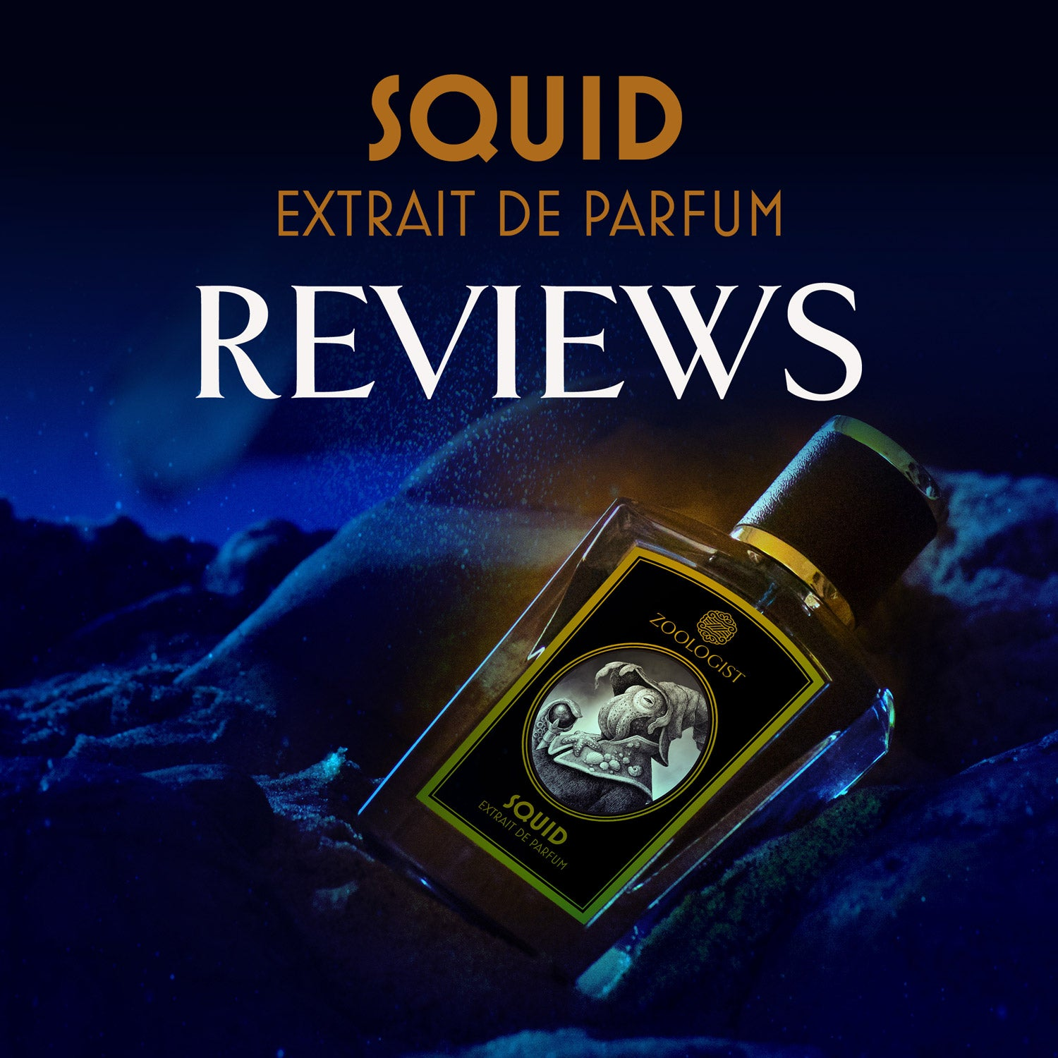 Zoologist Squid Reviews Roundup