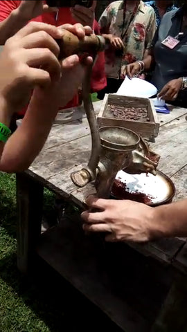 Hand grinding cocoa beans at the cacao farm in Dominica Island