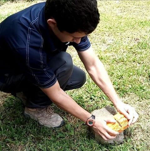Cracking open a cacao pod at the cacao farm in Dominica Island