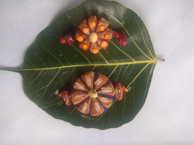 A Rakhi that regenerates forests