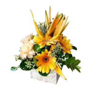 Boxed Flowers (Small) - Sunshine Yellow