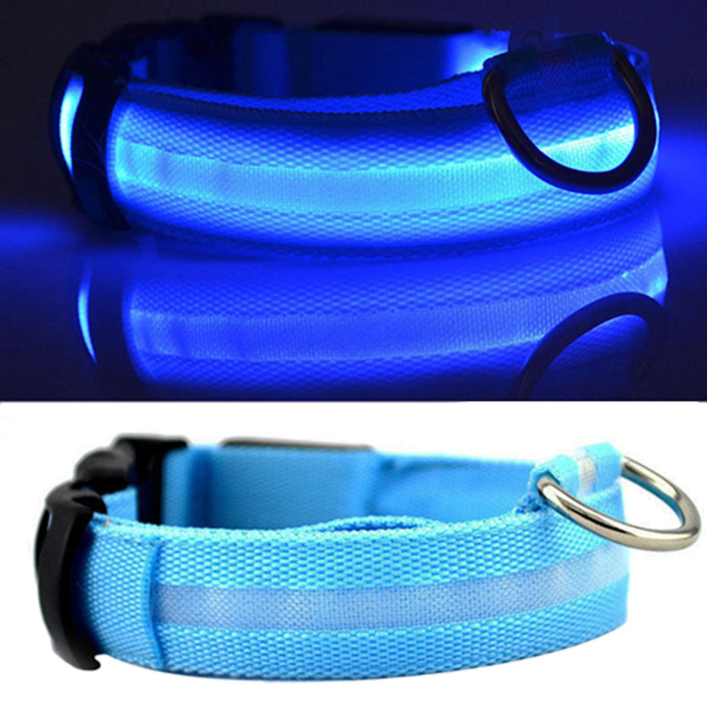 Light Up Collar Blue