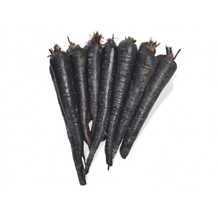 Black Carrot Powder ~ Uncommon Carrot of Asia ~ 30 g - Kenko Root