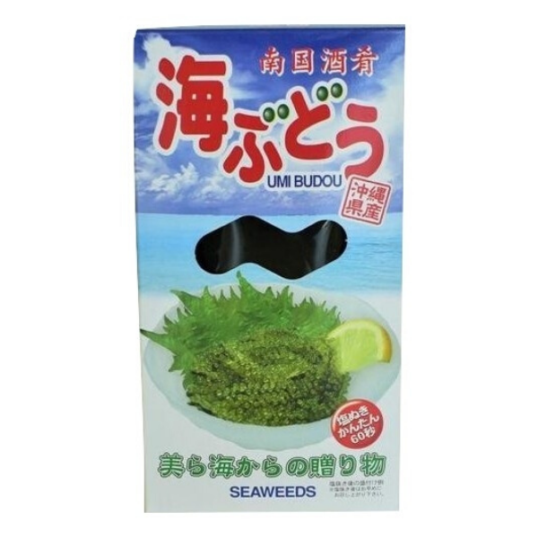 Umi Budo ~ Okinawa Sea Grapes ~ 120 g - Kenko Root
