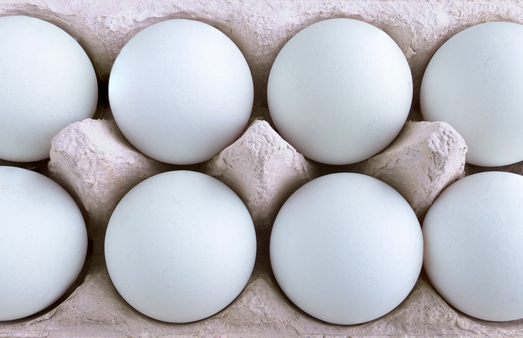 Eggs ~ 10 Eggs Born in Okinawa ~ S, M & L Mix - Kenko Root