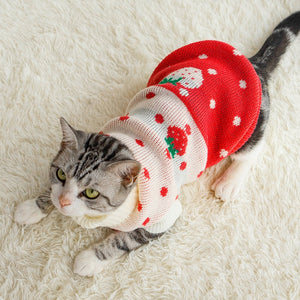 Cat Kawaii Sweater | RK1515