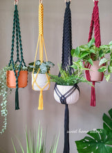 Load image into Gallery viewer, Plant Hangers - Bold