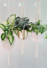 Load image into Gallery viewer, Simple Macrame Plant Hanger