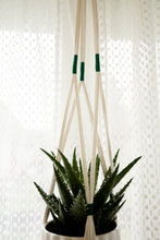 Load image into Gallery viewer, Macrame Plant Hanger - Emerald