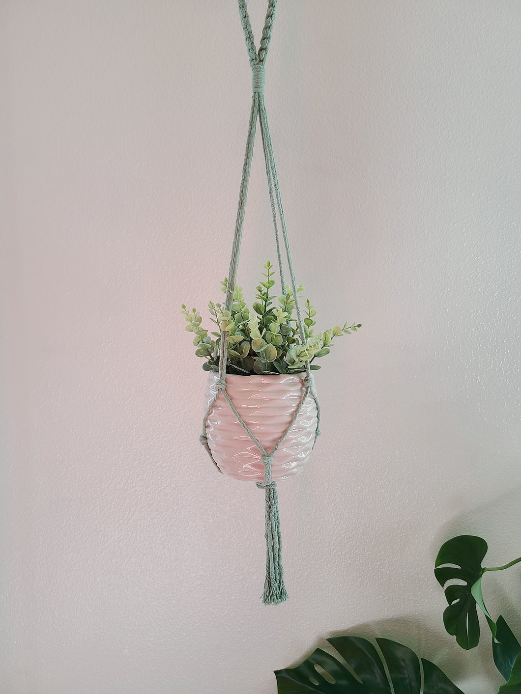 Clearance - Plant Hanger in Mint
