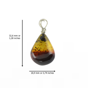 Baltic Amber pendant with 2 colors