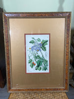 Framed 19th C French Handcolored Lithograph