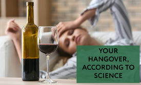 Your Hangover, According to Science