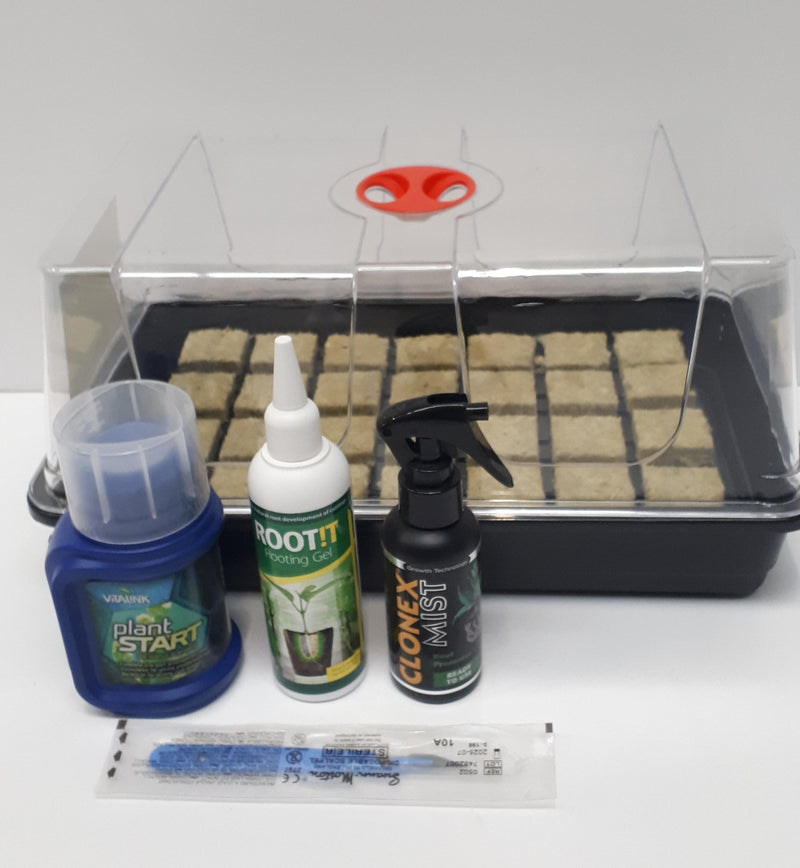 Basic Seed and Cutting Starter Kit - Rockwool