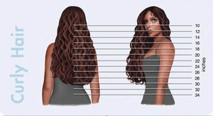 Hair Length Chart for Hair Extensions