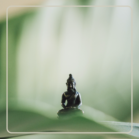 A guided meditation by Satish Kumar