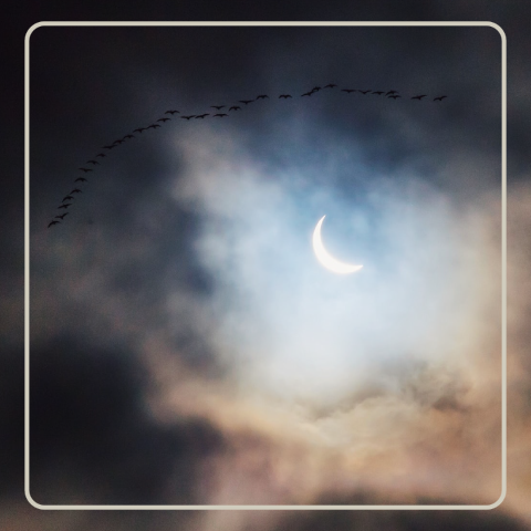 Total solar eclipse and new moon. December 14 2020