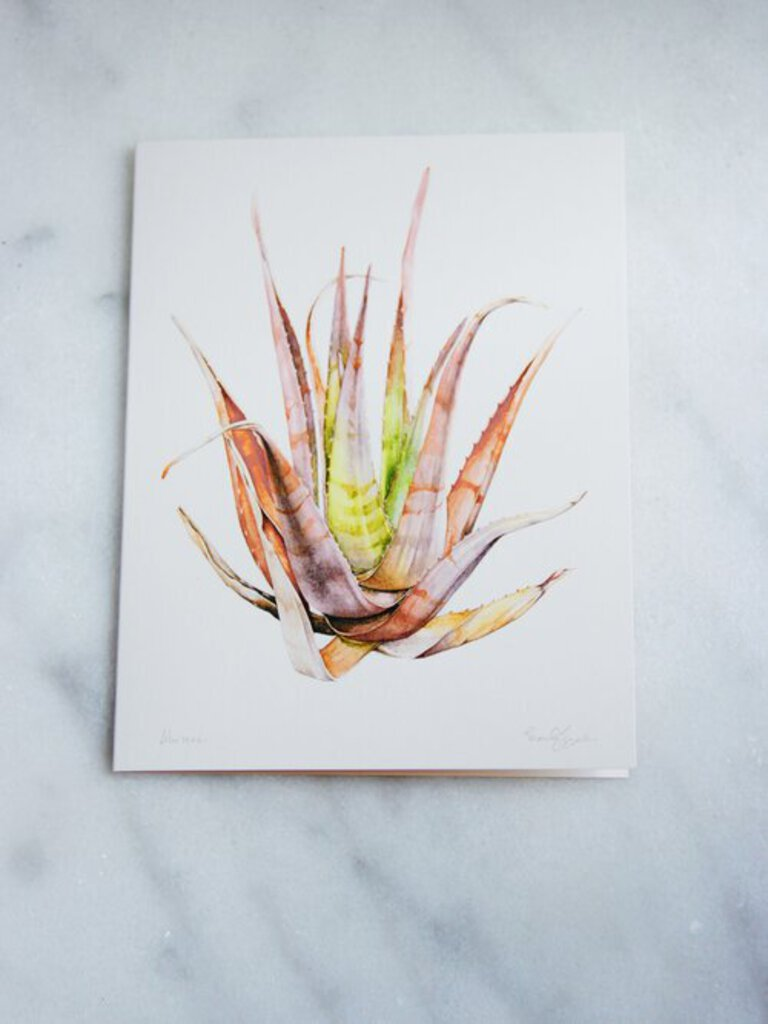 Marly Beyer Pink Aloe Vera Card