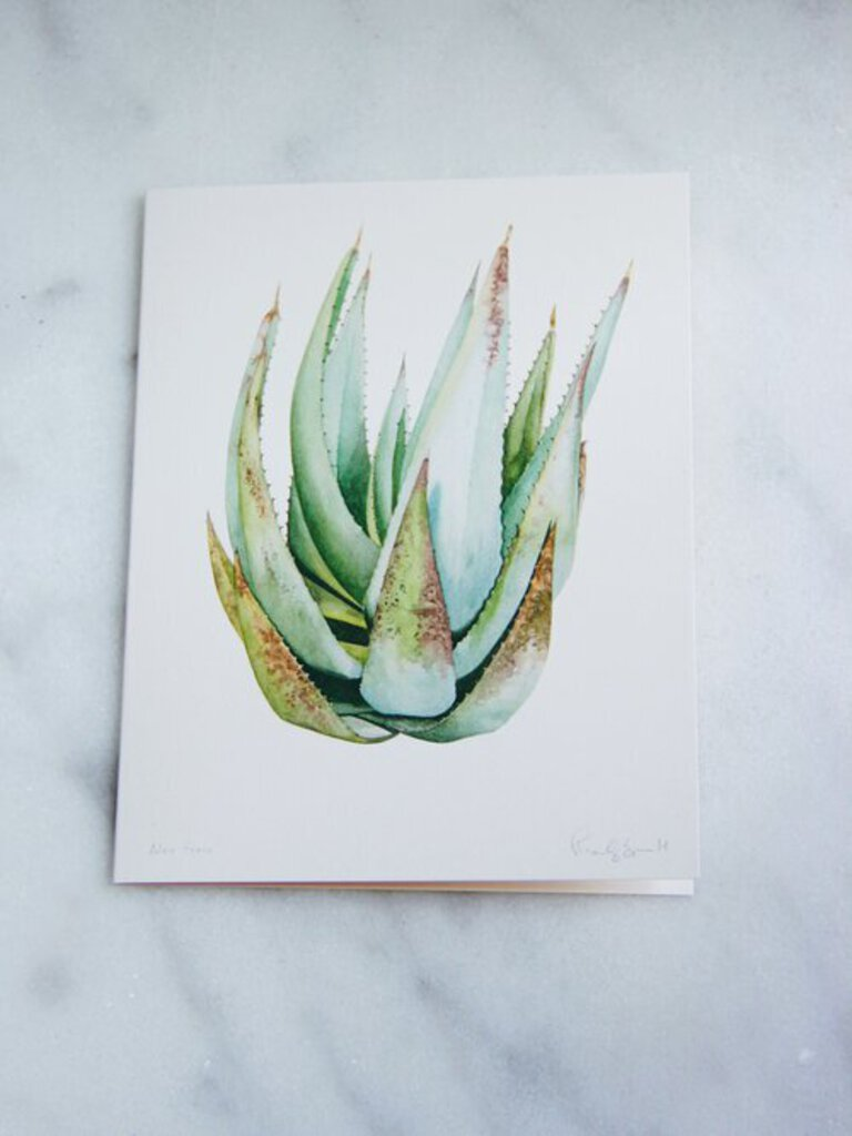 Marly Beyer Aloe Ferox Card