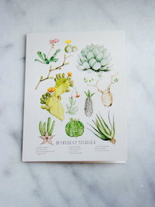Marly Beyer Succulent Families Card