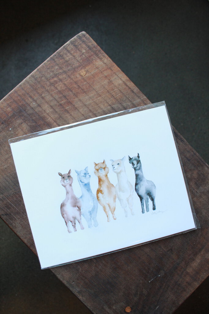 Easy Sunday Club PDX United Colors of Alpacas Print