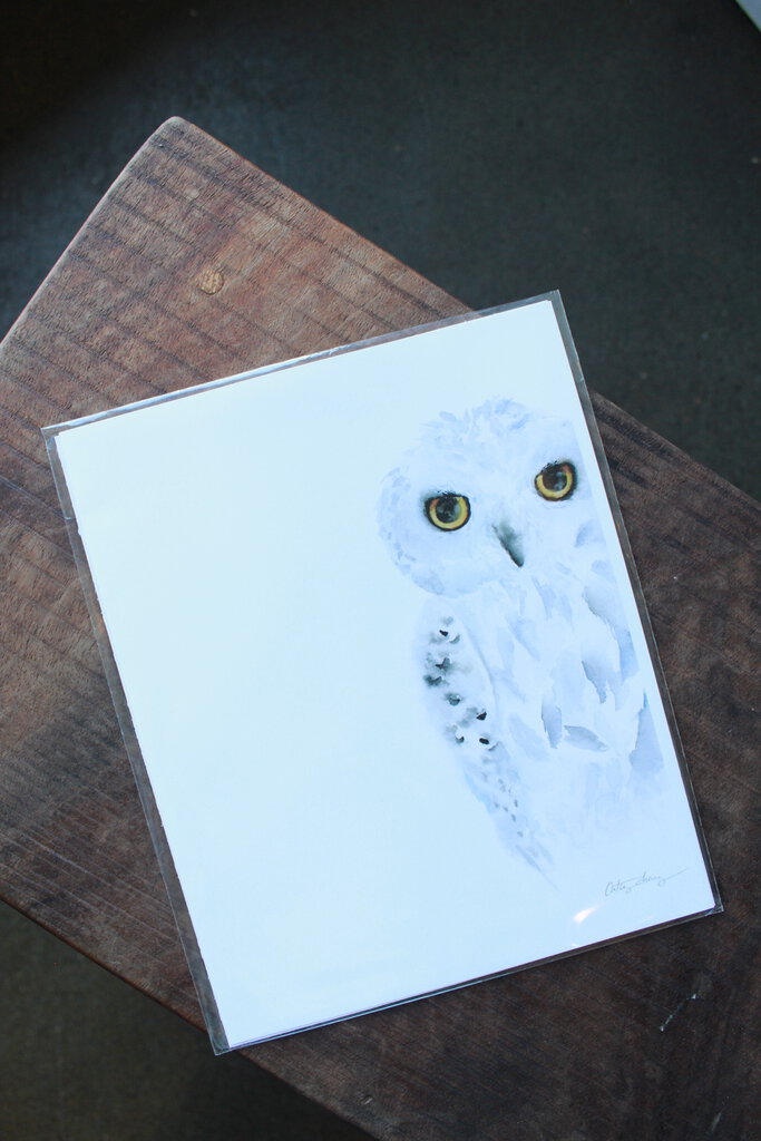 EASY SUNDAY CLUB SNOWY OWL PRINT