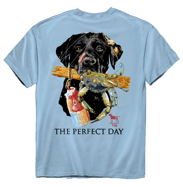 American Fido | Perfect Day 0947