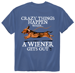 American Fido | Crazy Things Happen 1240
