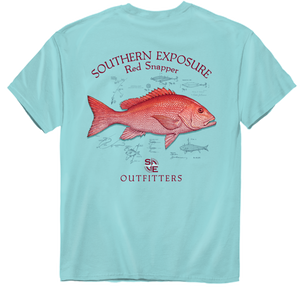 Southern Exposure | Red Snapper 2434