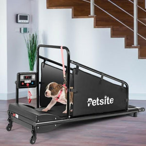 Treadmill For Pets with Remote Control - Self Care Fitnezz