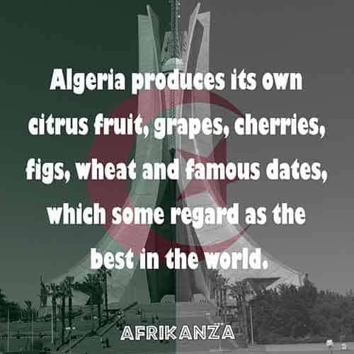 Algeria produces its own citrus fruit, grapes, cherries, figs, and dates