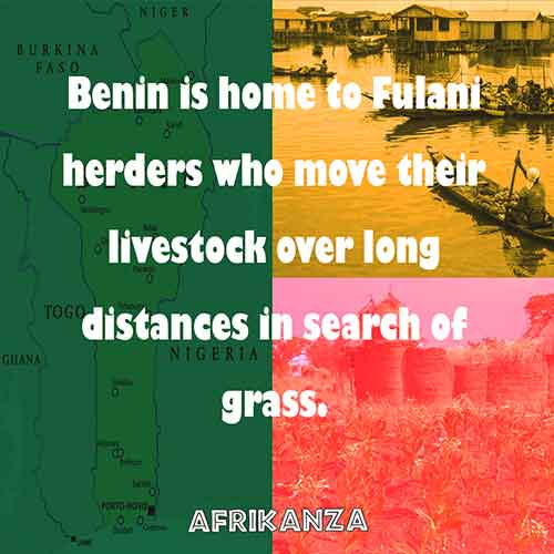 Benin is home to Fulani herders who move their livestock over long distances in search of grass