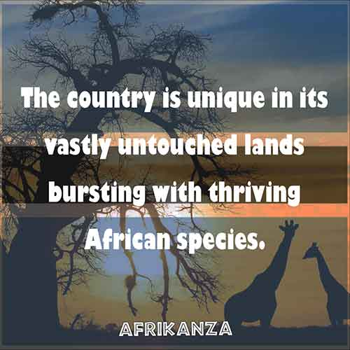 The country is unique in its vastly untouched lands bursting with thriving African species.