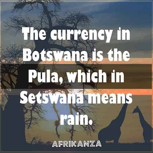 The currency of Botswana is the Pula, which in Setswana means rain.