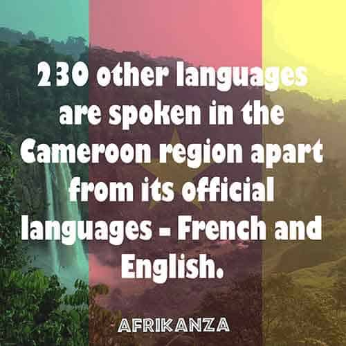 230 other languages are spoken in the Cameroon region apart from its official languages – French and English.