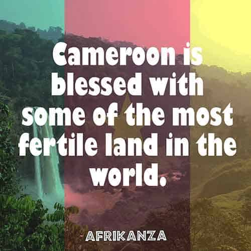 Cameroon is blessed with some of the most fertile lands in the world