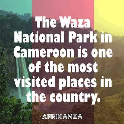 The Waza National Park in Cameroon is one of the most visited places in the country.