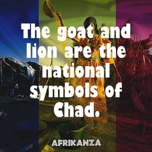 The goat and lion are the national symbols of Chad.The National animal for the northern part of the country is the mountain goat while the southern part is represented by a lion.