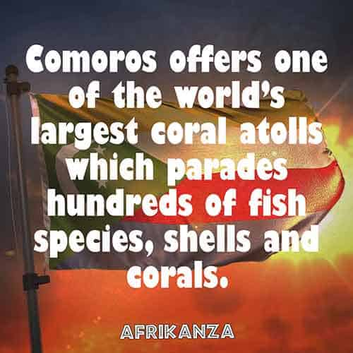 Comoros offers one of the world's largest coral atolls which parades hundreds of fish species, shells, and corals