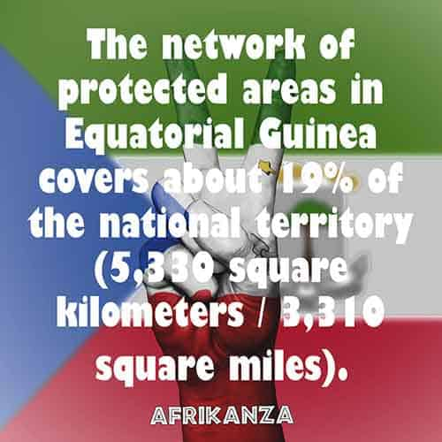 The network of protected areas in Equatorial Guinea covers about 19% of the national territory (5,330 square kilometers / 3,310 square miles)