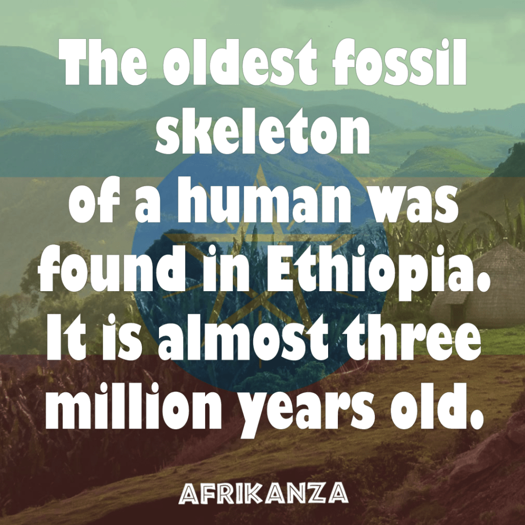 Fact-1-Oldest-fossil-skeleton of-a-human-found-in-Ethiopia.-It-is-over-three-million-years-old